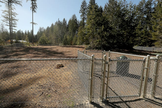 Dog run area at McCormick Woods Park in Port Orchard on Monday March 18, 2019.
