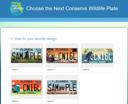 Screen grab of the students' designs for the 'Conserve Florida' license plate contest.
