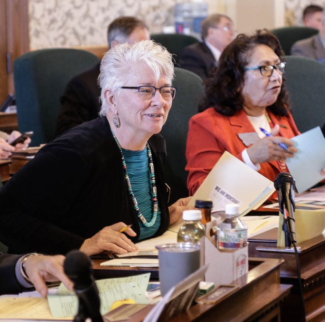 """Sen. Diane Sands, D-Missoula, is carrying Senate Bill 289, and says pregnant women are less likely to to seek treatment for addiction if there is a """"threat of being charged with drug possession."""""""