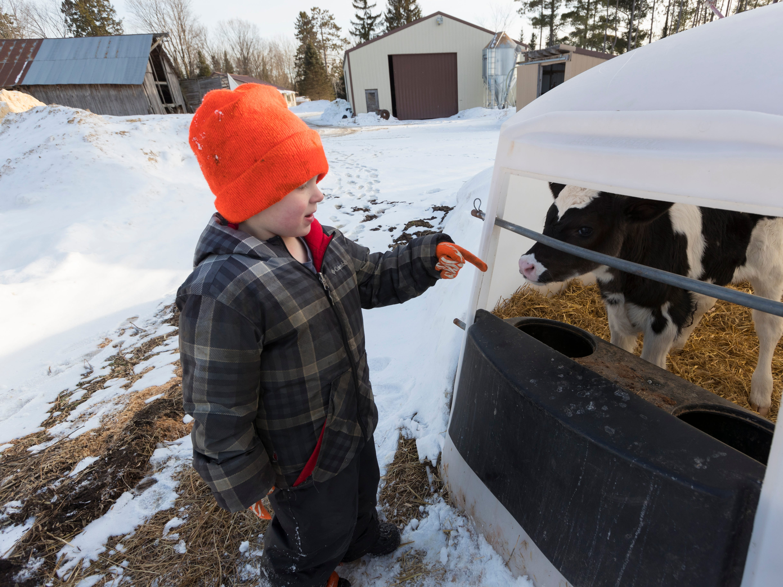 Skyler Thewis talks to a calf on his family's farm.
