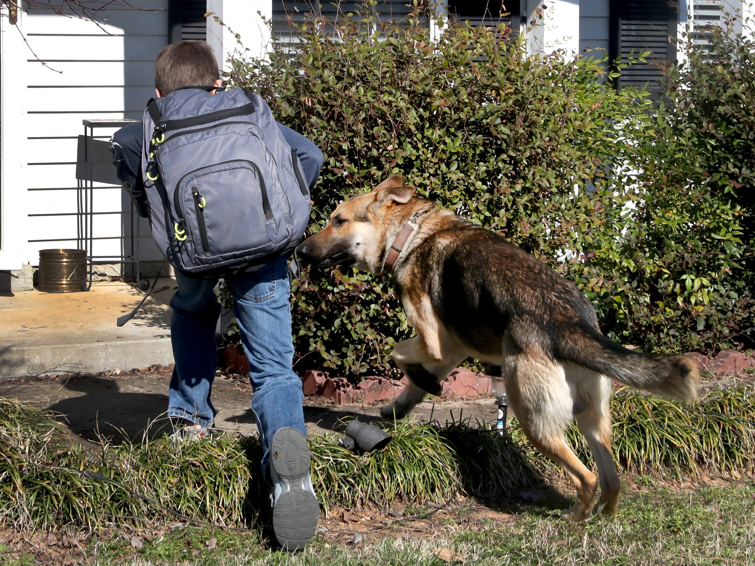 Justin White, 10, goes inside his home with his dog Goblin, on Tuesday, March 19, 2019, after Goblin greeted him after getting off the school bus.