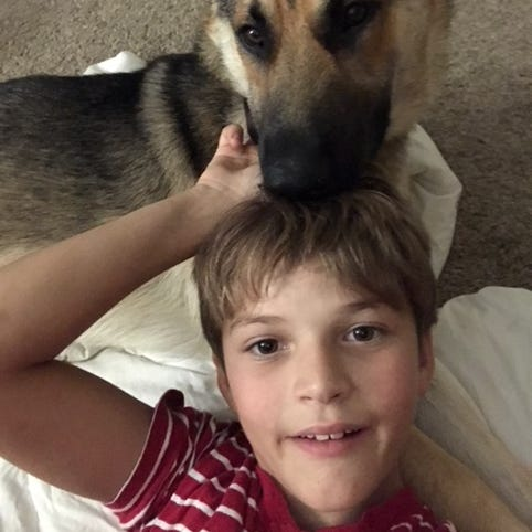 Dognapped: Christiana mom says someone stole a dog from her special needs son