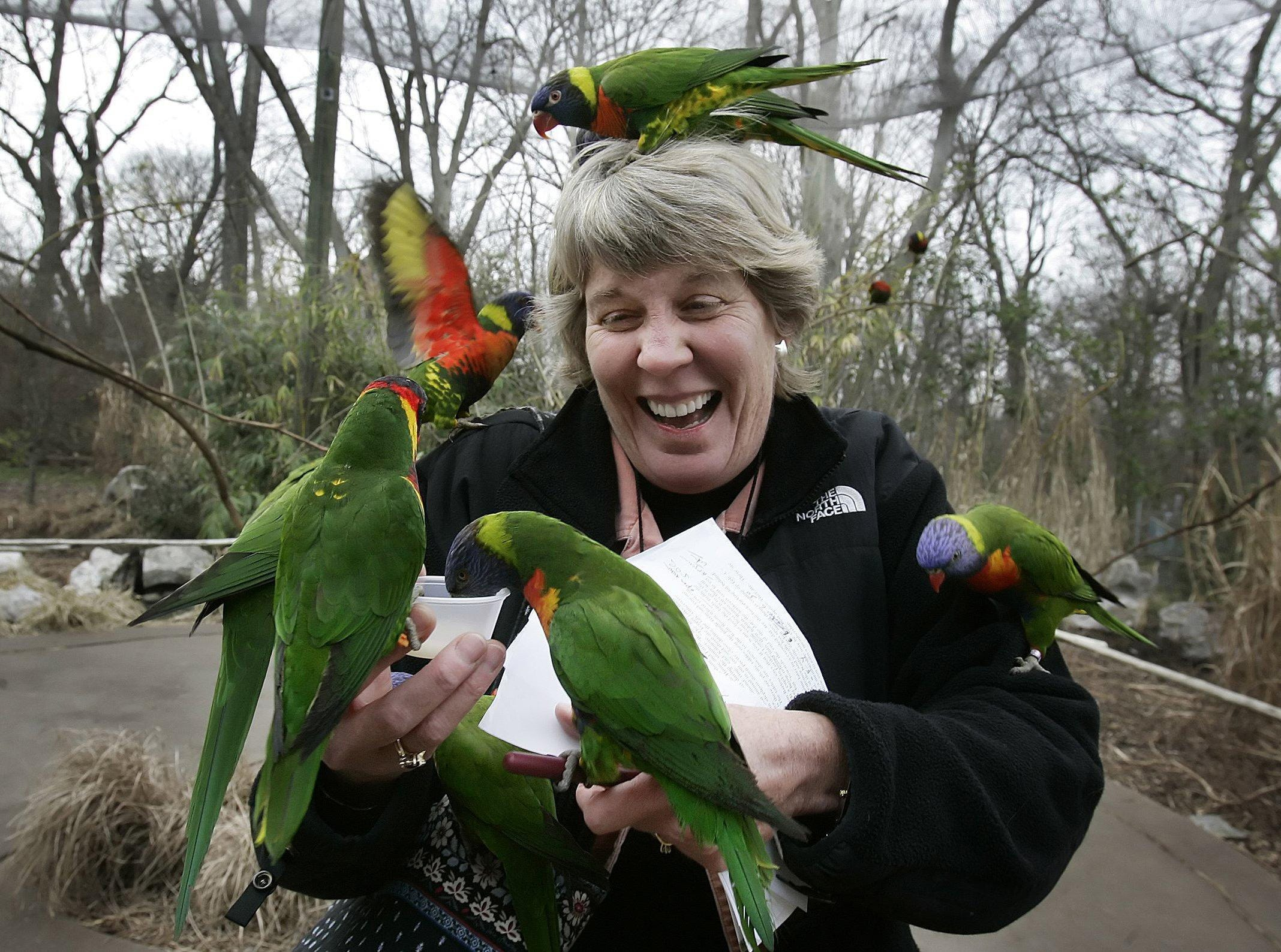 Ms. Cheap's Mary Hance gets a visit from friends at Lorikeet Landing, an aviary at the Nashville Zoo, on Jan. 15, 2007.