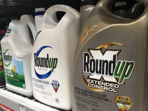 FILE - In this Sunday, Feb. 24, 2019 file photo, containers of Roundup are displayed on a store shelf in San Francisco. A jury in federal court in San Francisco has concluded that Roundup weed killer was a substantial factor in a California man's cancer. The unanimous verdict on Tuesday, March 19, 2019, came in a trial that plaintiffs' attorneys said could help determine the fate of hundreds of similar lawsuits against Roundup's manufacturer, agribusiness giant Monsanto.  (