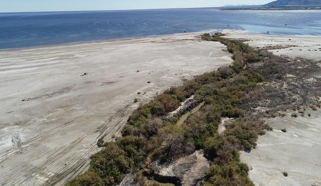 The badly eroding shoreline of the Salton Sea, February 19, 2019.