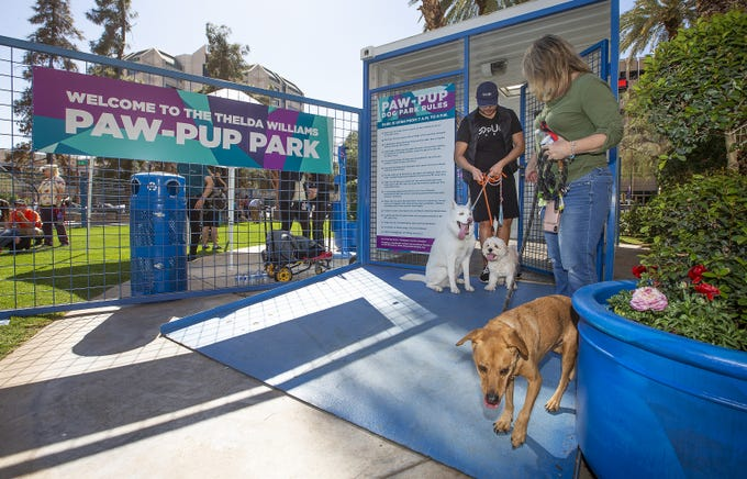 Dogs and puppies play at the grand opening of the Thelda Williams Paw-Pup Park at 200 West Jefferson St. in downtown Phoenix, Monday, March 18, 2019. The dog park is sponsored by the Downtown Phoenix Partnership and the city of Phoenix with major contributions from Petsmart Charities.