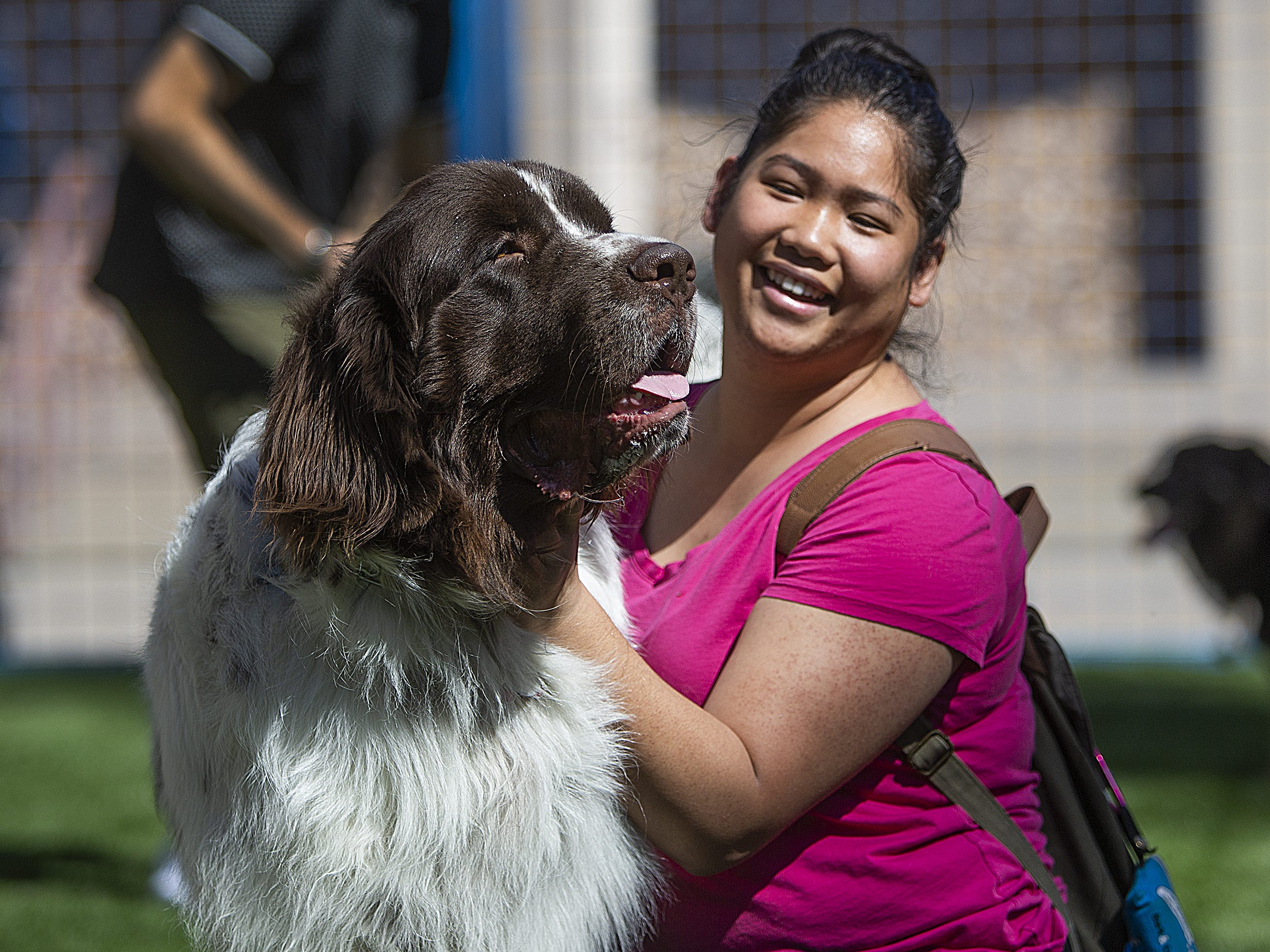 Napoleon, a Newfoundland, and his owner, Kristie Le, along with other dogs and puppies play at the grand opening of the Thelda Williams Paw-Pup Park at 200 West Jefferson St. in downtown Phoenix, Monday, March 18, 2019. The dog park is sponsored by the Downtown Phoenix Partnership and the city of Phoenix with major contributions from Petsmart Charities.