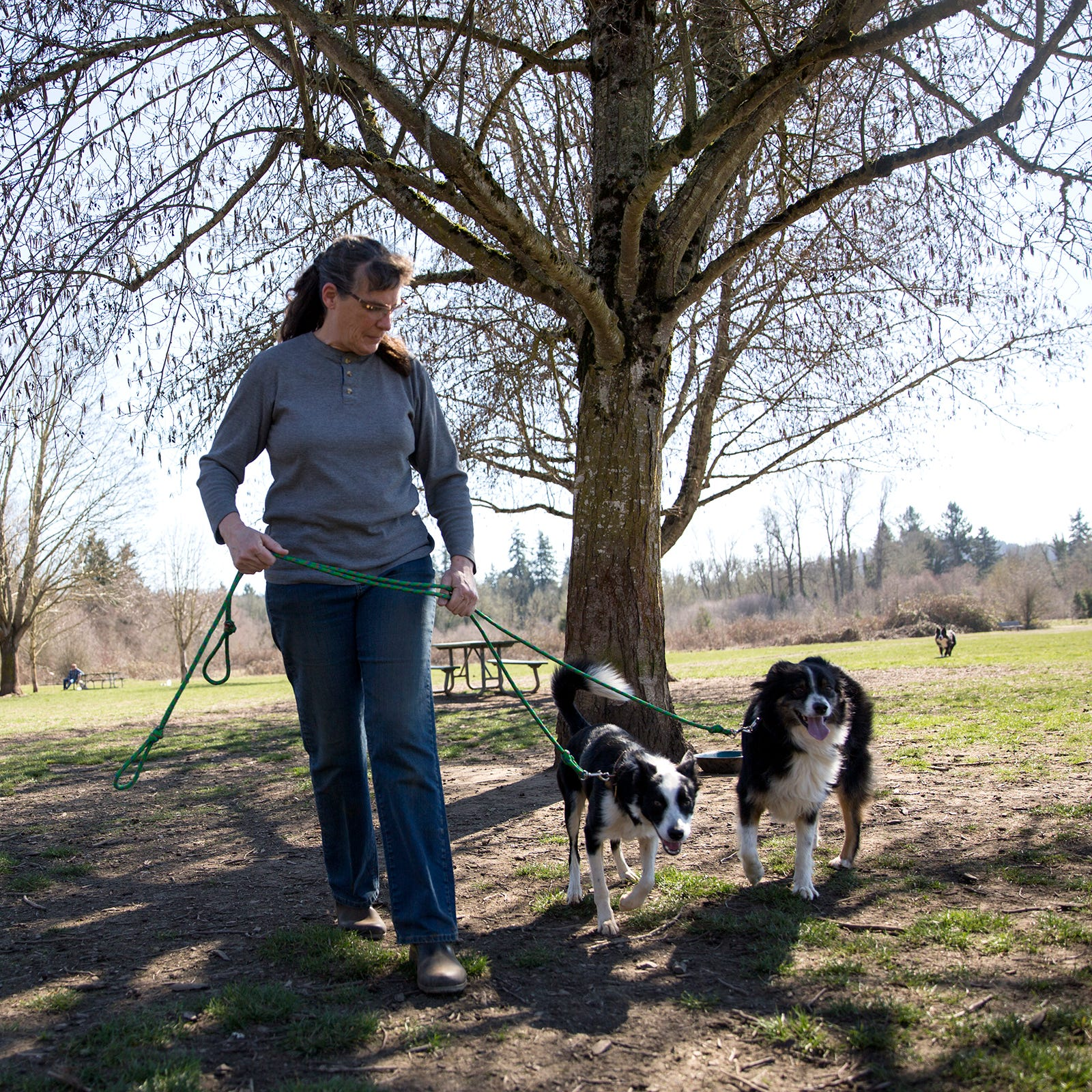 Some friendly advice on dog etiquette for dog owners, others enjoying Minto Brown Island Park