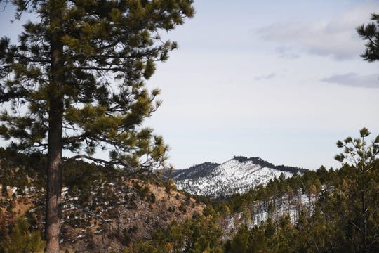 Custer State Park Sunday, March 17, in Custer.