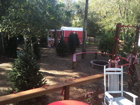 The 4.5-acre lot, the former site of Santa's Christmas Tree Village at 6005 S. U.S. 1 in Fort Pierce, will be sold at auction at 10 a.m. Wednesday.