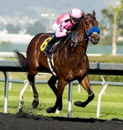 Anothertwistafate will try and win the Sunland Derby on Sunday at Sunland Park Racetrack & Casino.