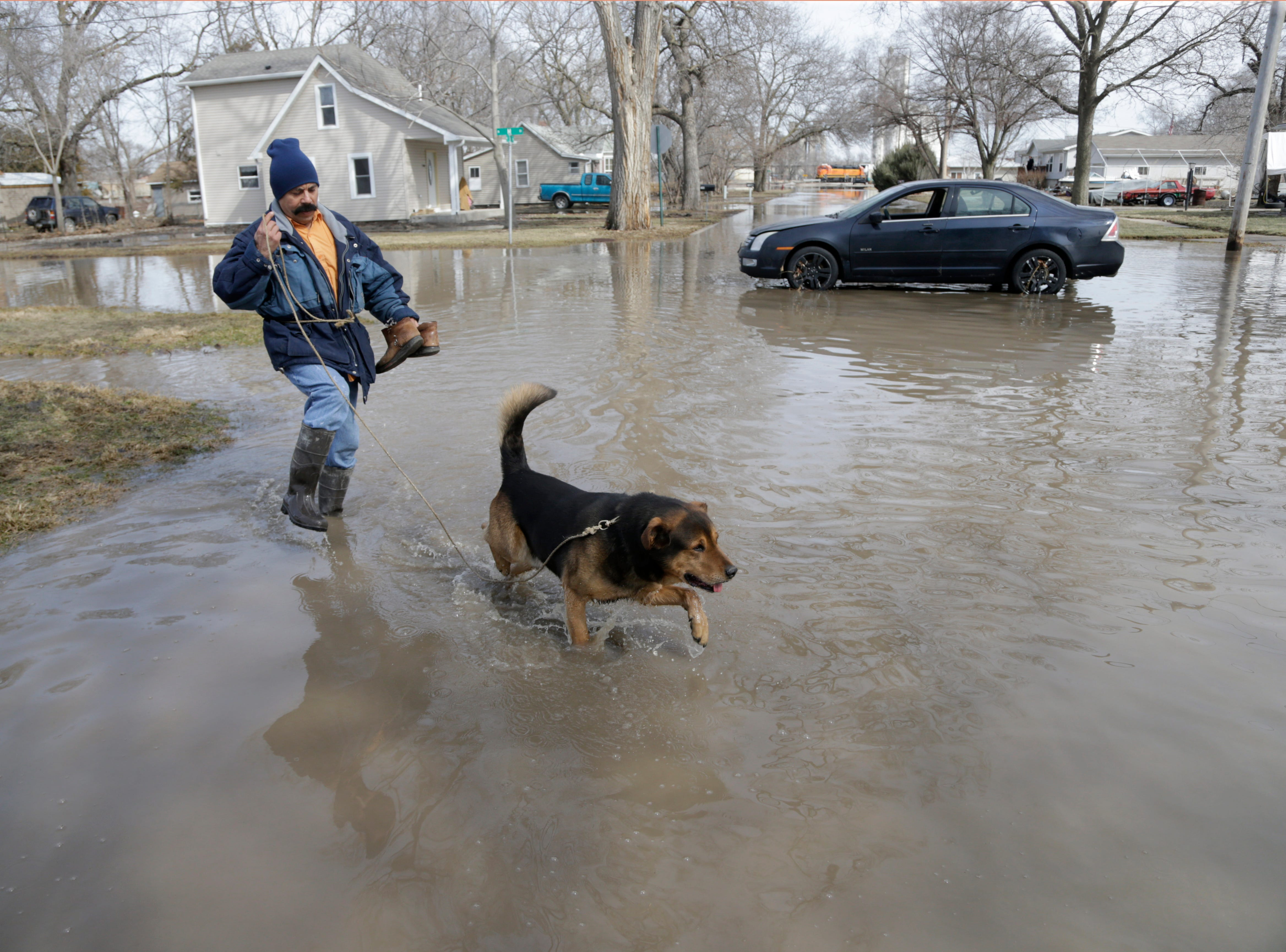 Trino Nuno and his dog Tyson navigate flooded streets in Fremont, Neb. on March 18, 2019.