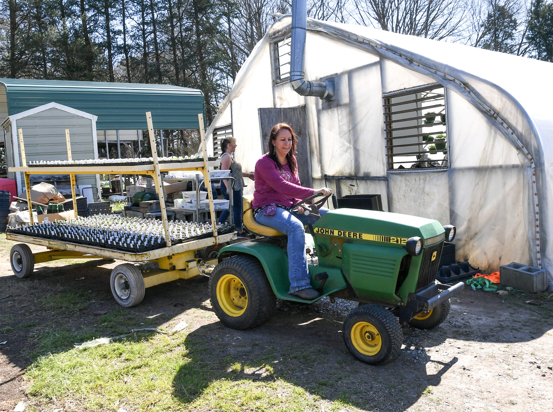 Denise Blackwell drives a trailer with cayenne peppers in flats to one of her greenhouses at McAlister Greenhouses during the first day of spring in Anderson Wednesday.