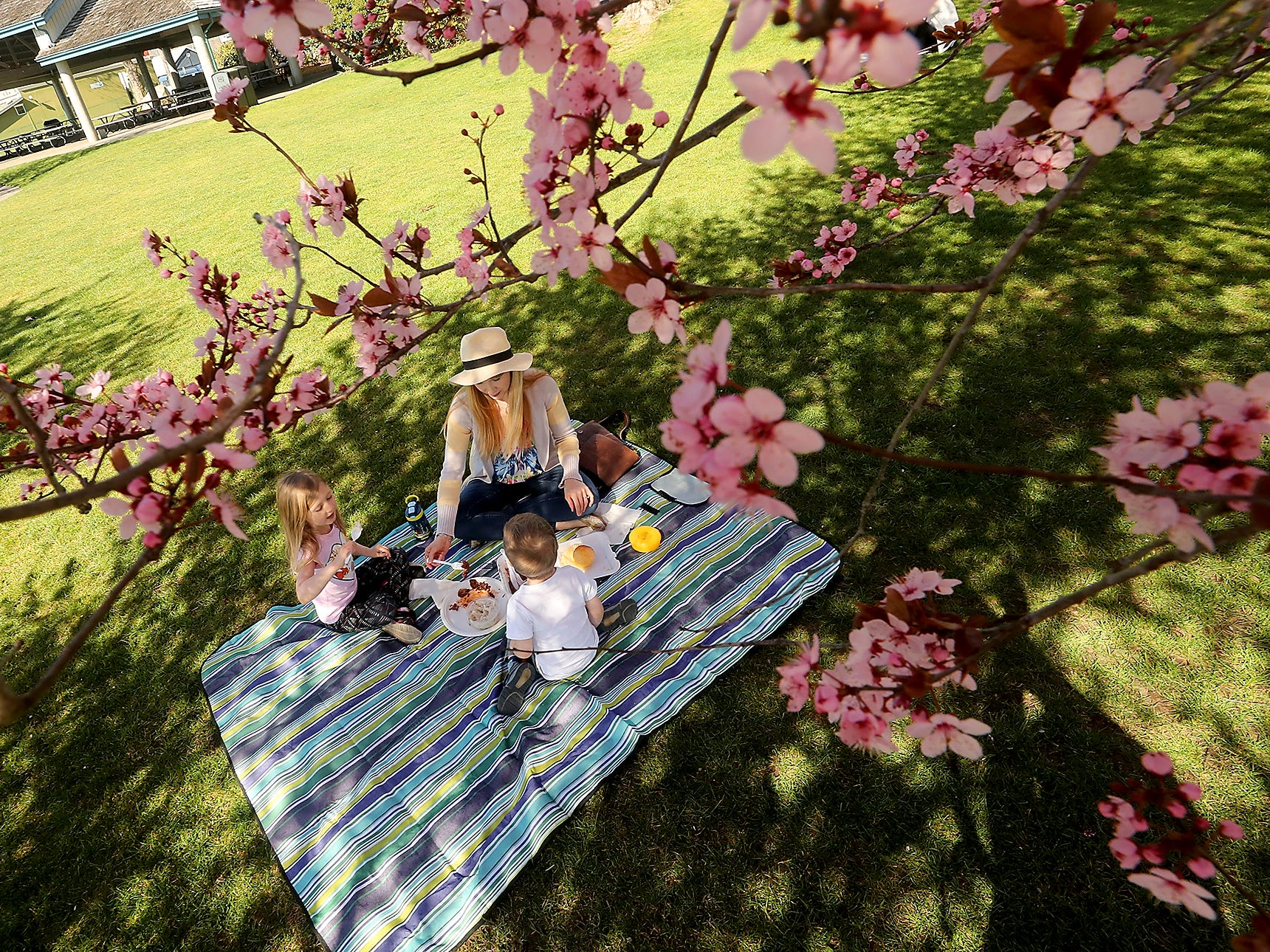 Lauren Wheeler and her children Elaine, 5, and Cale , 2, celebrate the first day of Spring with a picnic lunch underneath the flowering trees at Silverdale Waterfront Park on Wednesday, March 20, 2019.