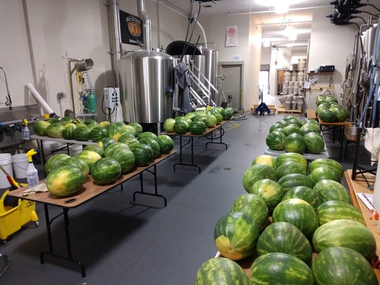 Watermelons used to make the Tastes Like Summer Watermelon Wheat from Wet Ticket Brewing.