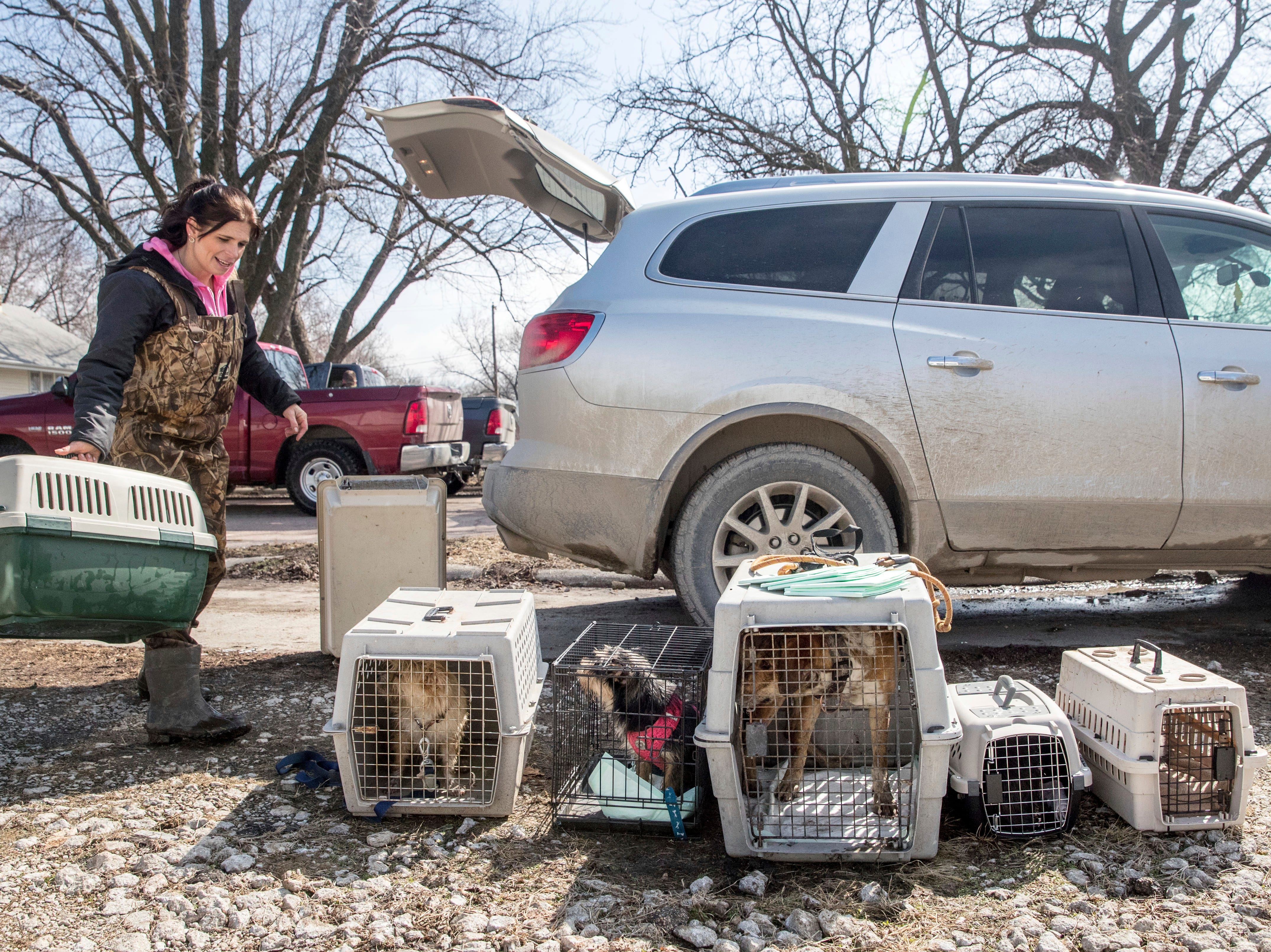 Melissa Lenagh waits for the owners of the pets she rescued from floodwaters to show up Wednesday, March 20, 2019, in Hamburg, Iowa. As some communities along the Missouri River start to shift their focus to flood recovery after a late-winter storm, residents in two Iowa cities are still in crisis mode because their treatment plants have shut down and they lack fresh water. (Chris Machian/Omaha World-Herald via AP)