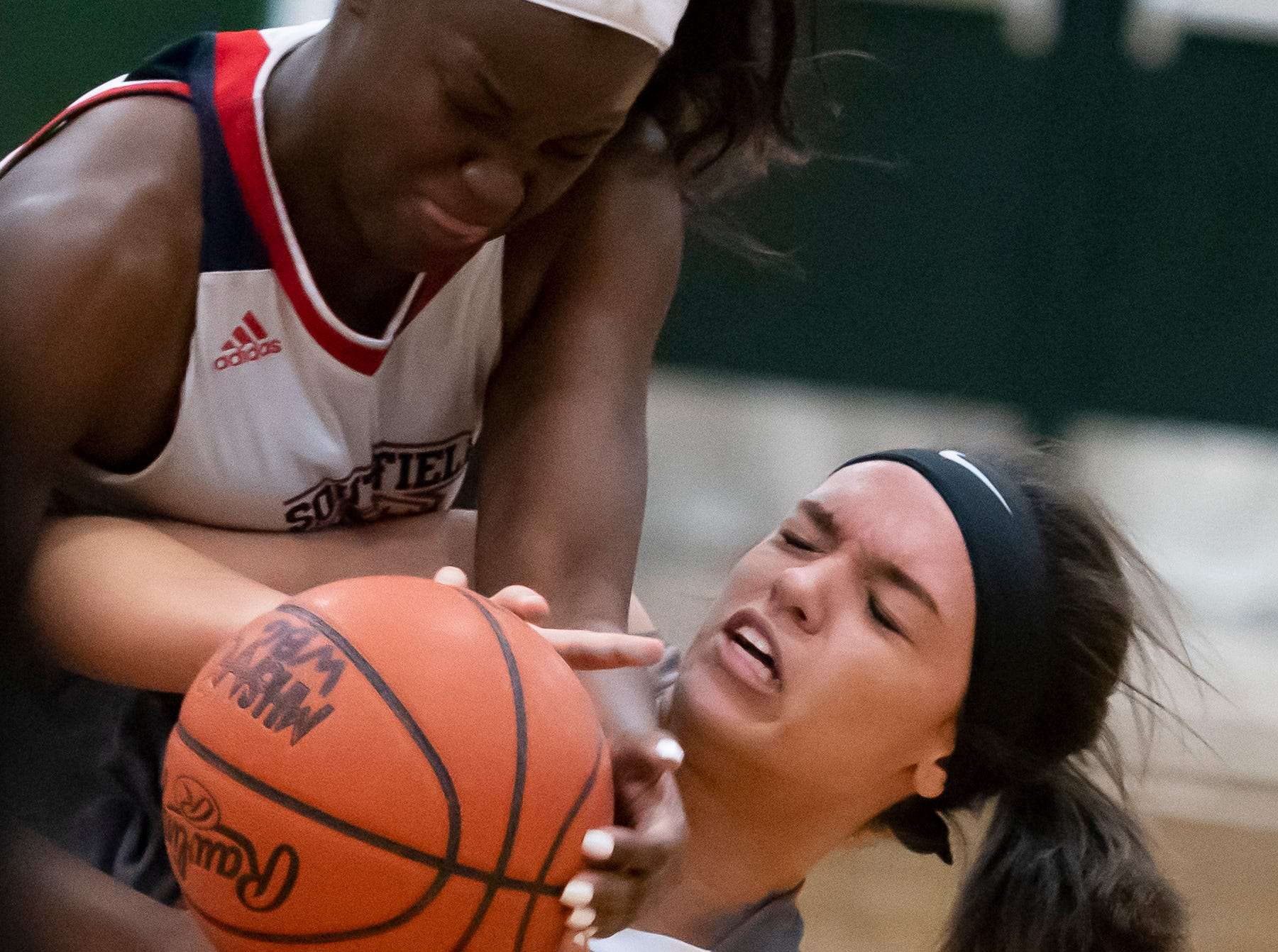 Southfield A&T forward Alexis Johnson and Lakeview forward Ariana Wlodeck battle for a loose ball in the second half.
