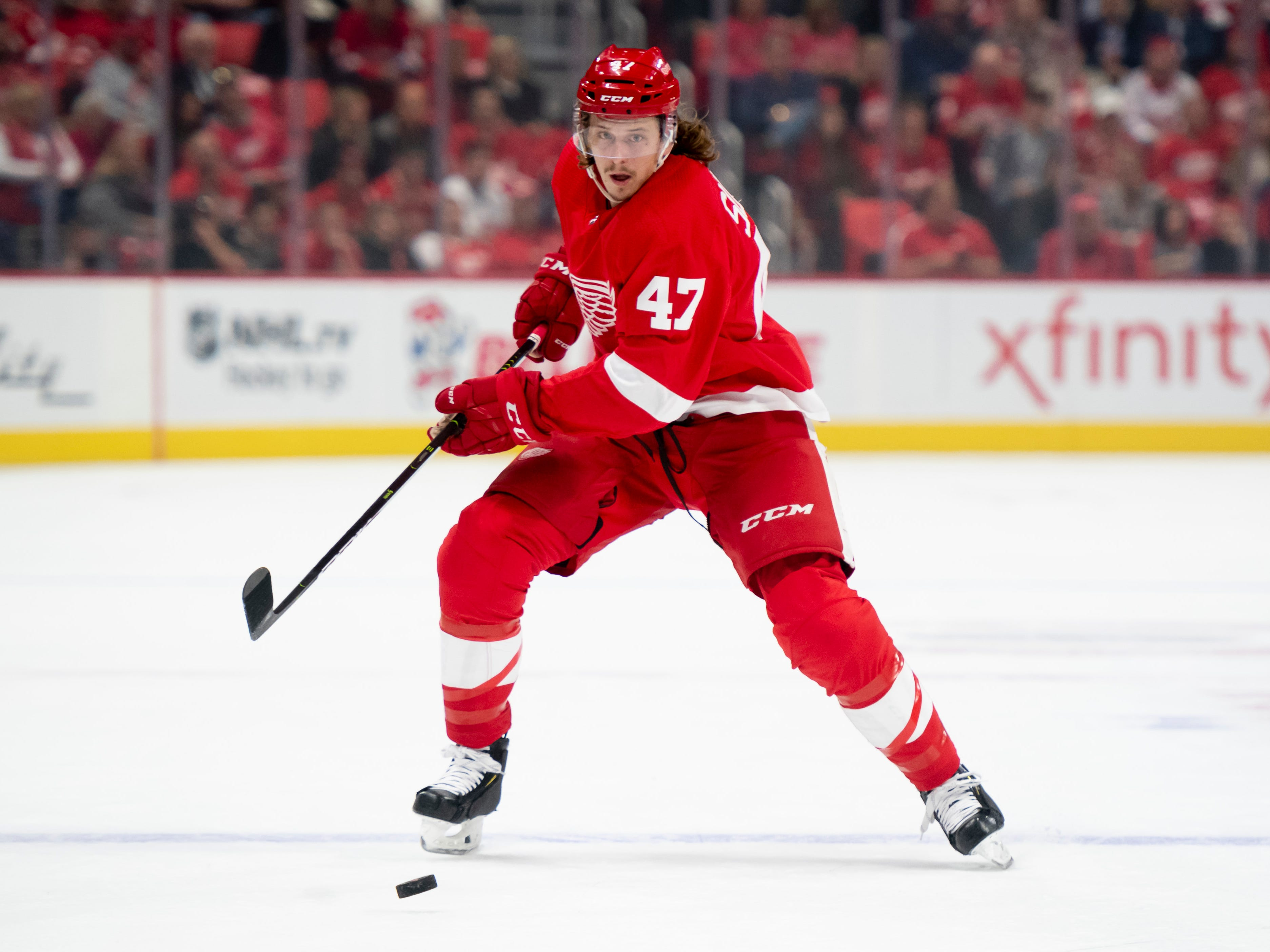 Red Wings call up rookie Libor Sulak to bolster battered defense