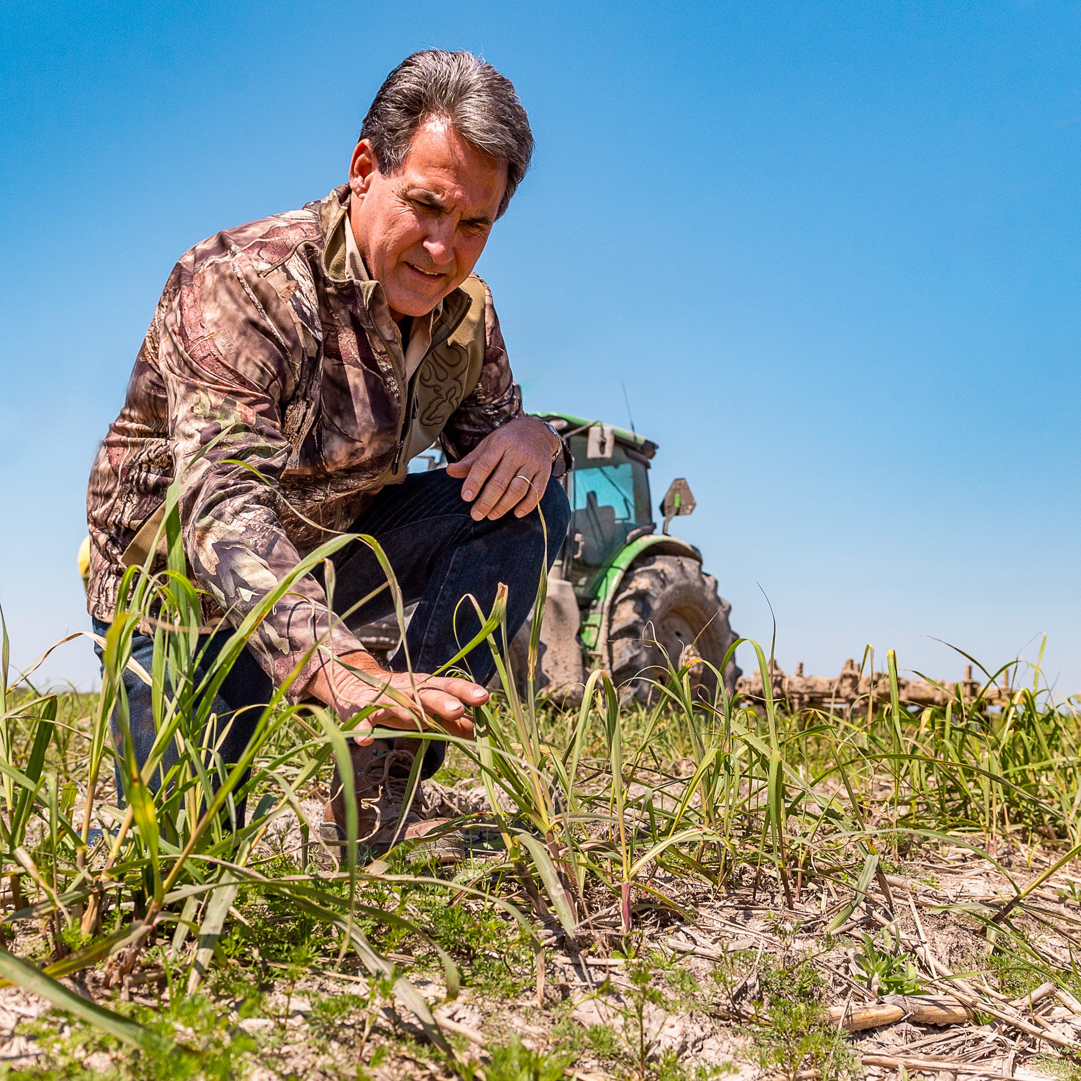 Raising sugarcane is south Louisiana way of life, positioned for growth