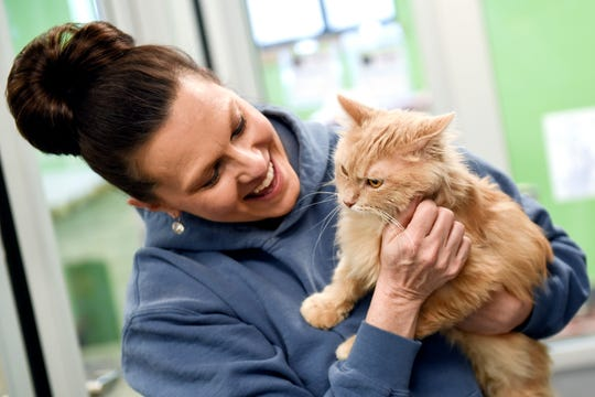 Interim Director of Community Relations Penny Myers interacts with Notorious C.A.T, a 2-year-old male cat up for adoption, on Wednesday, March 20, 2019, at the Capital Area Humane Society in Lansing. About 15 cats from the humane society will be housed at the The Trendy Tabby Cat Cafe and will be available for adoption.
