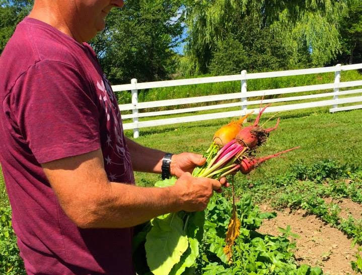 Twisted Willow co-owner and executive chef Dan Wiken and his staff spend plenty of time in the fields at the farm.