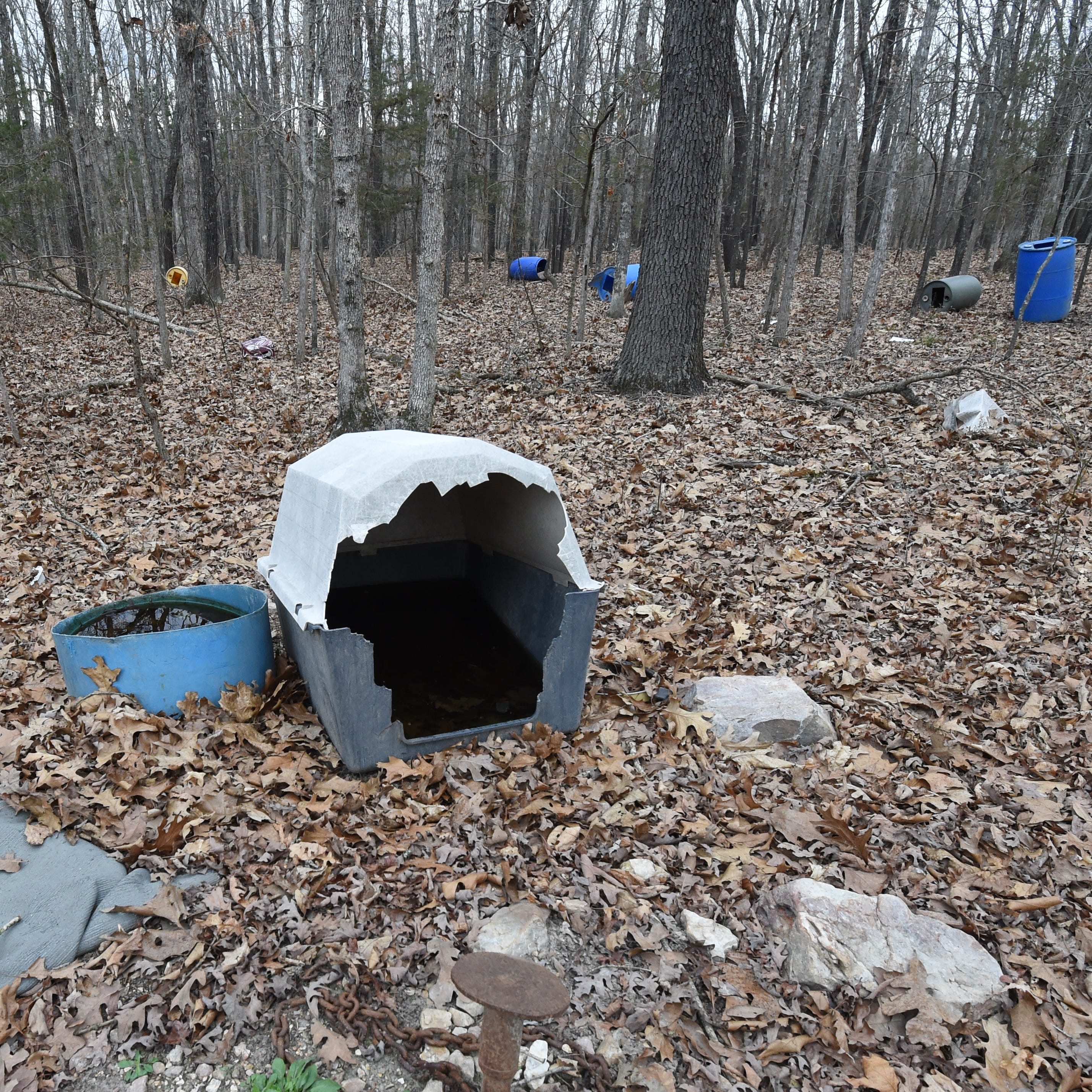 Yellville man faces animal cruelty charges after remains of several dogs found