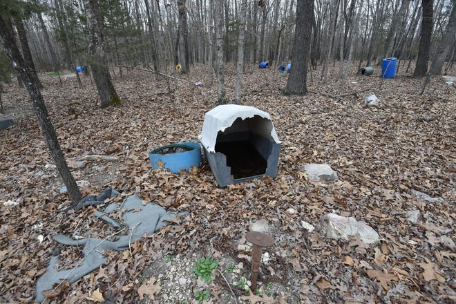 Standing water sits inside a kennel at the rural Yellville home of Chance Dodson in this file photo. Several other barrels that served as kennels can be seen in the background. Dodson was sentenced to two years in prison Wednesday after he was found guilty of aggravated animal cruelty.