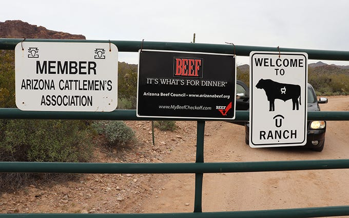 A green gate greets visitors to Quarter Circle U Ranch, where the cattle are genetically selected and artificially inseminated to end up with tastier beef.
