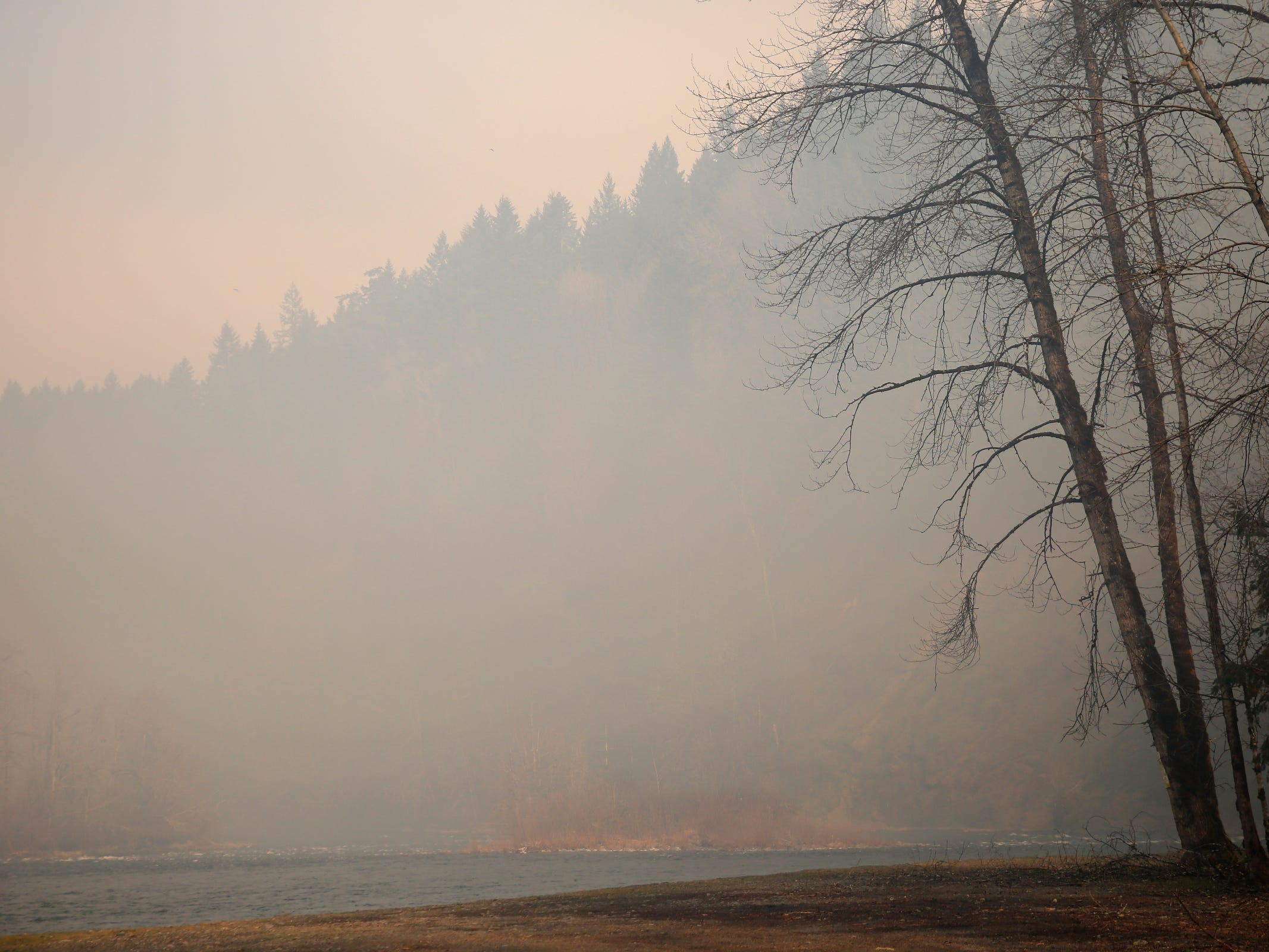 A wildfire that began Tuesday continues to burn in the North Santiam State Recreation Area in near Lyons on March 20, 2019. The fire has forced evacuations in Marion and Linn counties.