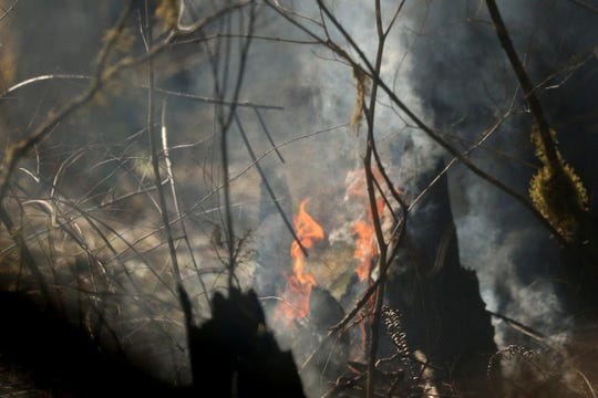 Flames shoot out from a log as a wildfire that began Tuesday continues to burn in the North Santiam State Recreation Area in near Lyons on March 20, 2019. The fire has forced evacuations in Marion and Linn counties.