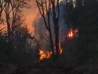 A fire burns in brush and timber in North Santiam State Recreation Area Tuesday evening.