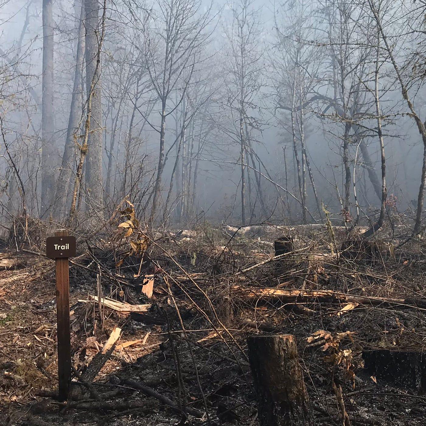 Santiam Park Fire: Burn ban issued in Marion, Clackamas, Linn counties