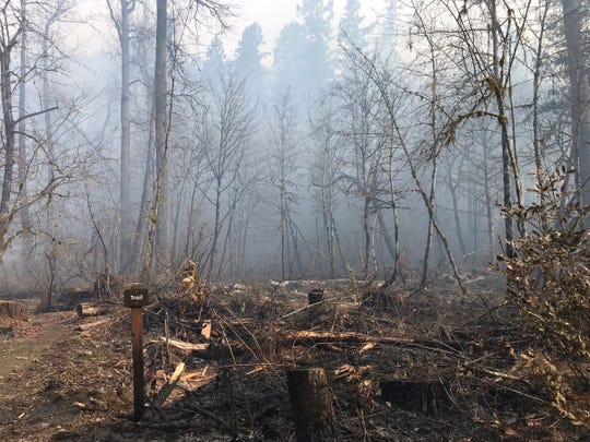 A burned area near a campground in North Santiam State Recreation Area March 20, 2019. A grass fire was reported Tuesday afternoon in the park on the Marion County side of the North Santiam River.