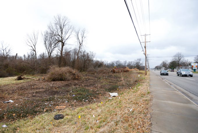 Trees in a lot along East Sunshine Street, near Luster Avenue, are being removed where Hy-Vee has said it plans to build a new grocery store in the future.