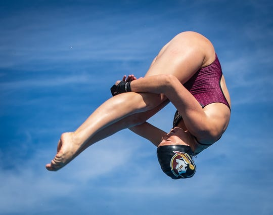 FSU junior diver Molly Carlson qualified for her third consecutive NCAA Championships in all three events.