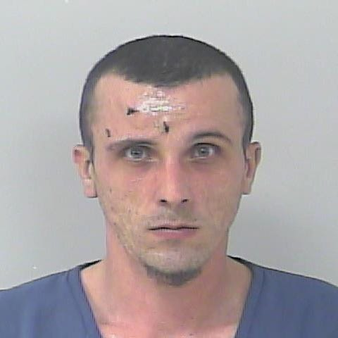 Florida man arrested after traffic crash found with 'fake urine,' says it's for 'role play' with spouse