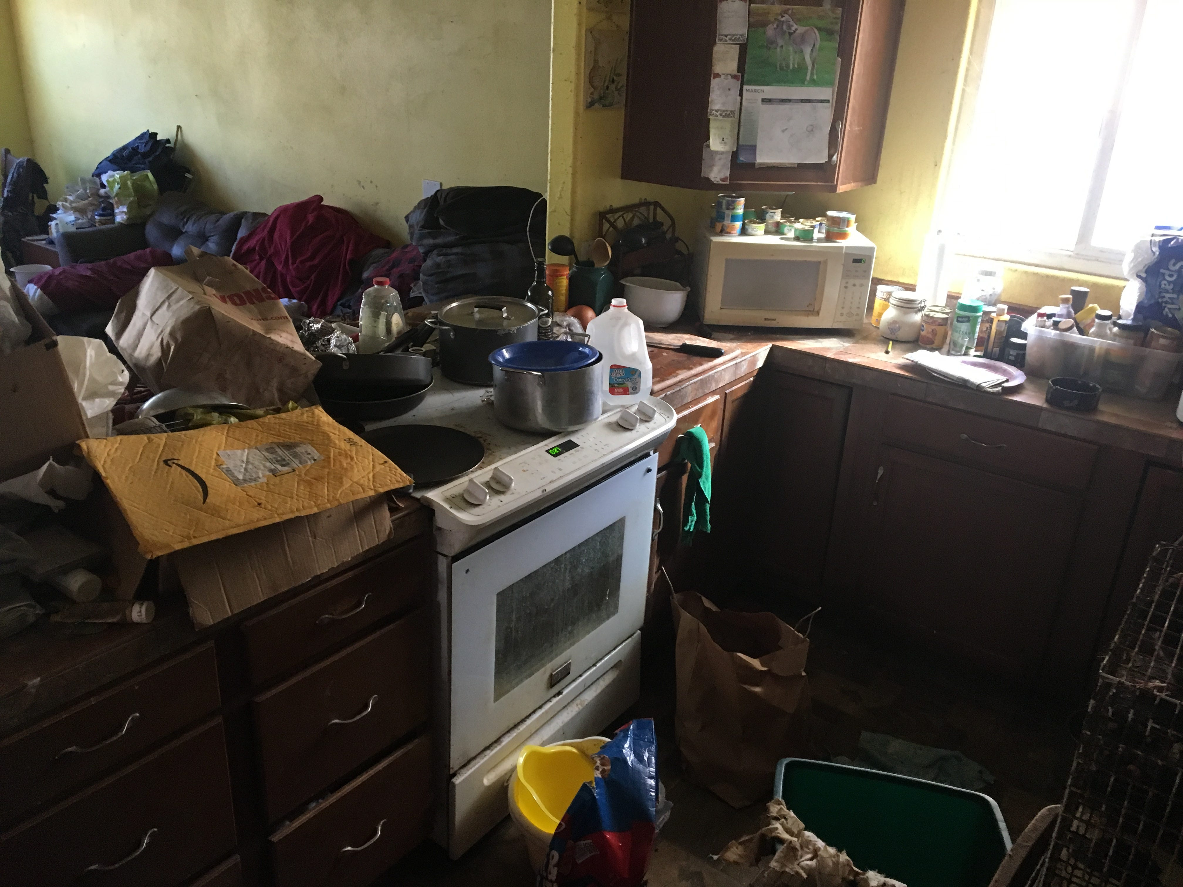 This was the scene of a house in Ojai where an elderly man and his daughters lived with hundreds of rats and other animals in conditions deemed unfit for human life.