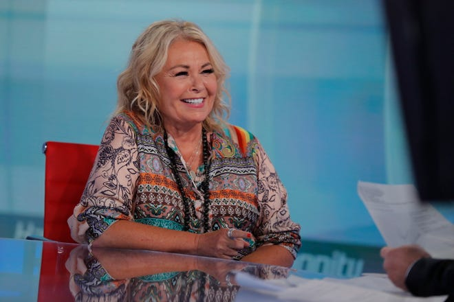 Roseanne Barr talks with Fox News talk show host Sean Hannity during an interview on July 26, 2018, in New York.