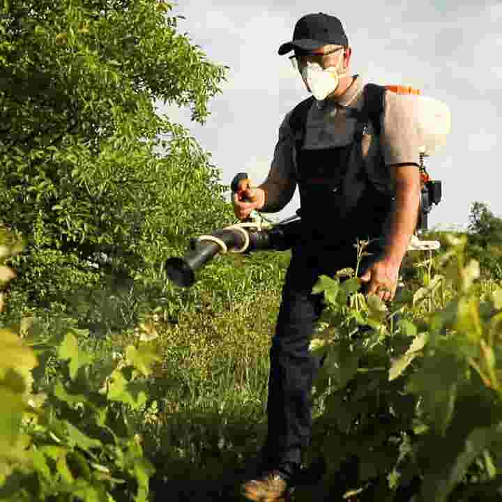 New Report Highlights Produce With Most Pesticides