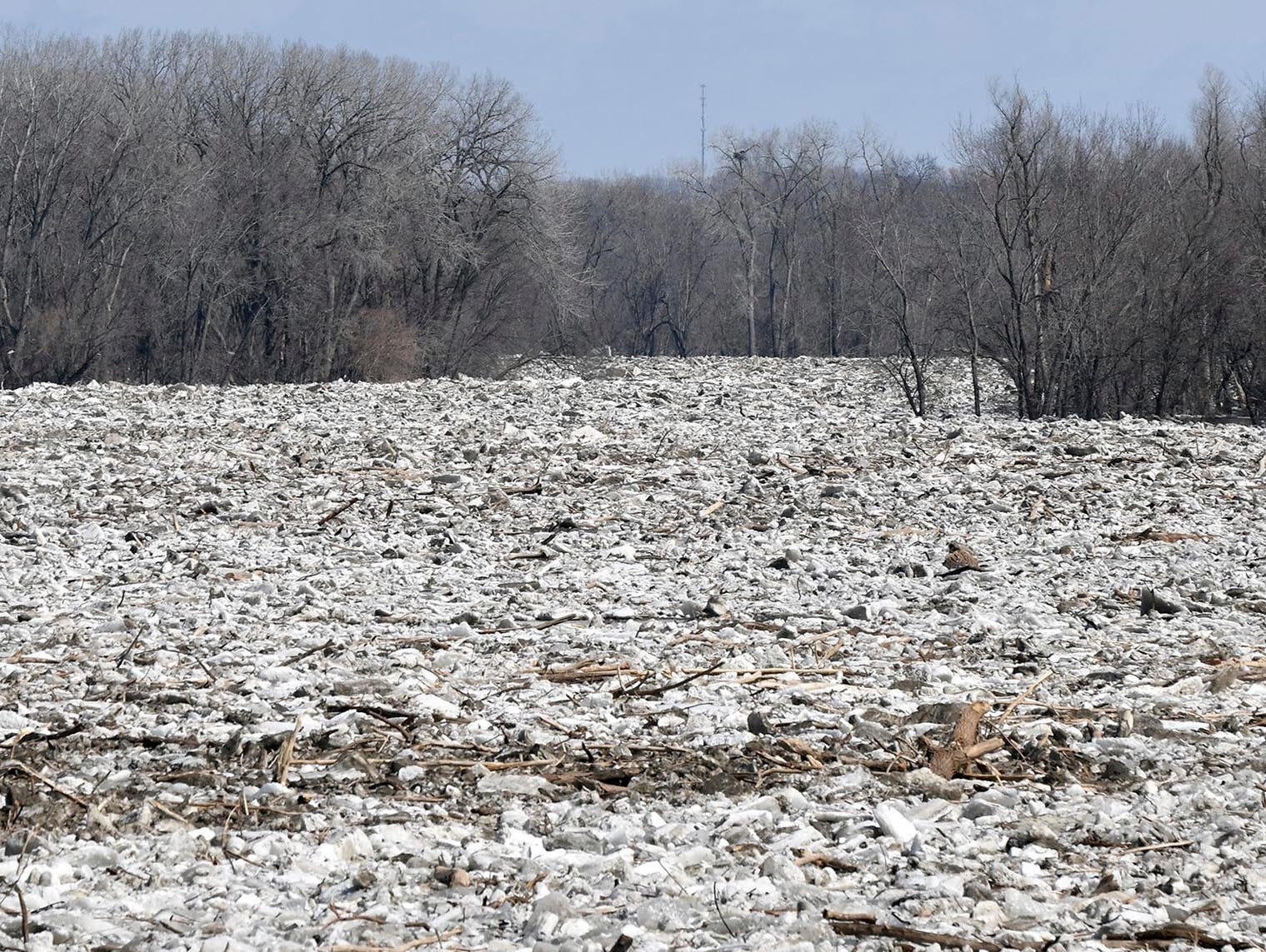 A massive ice jam clogs up the Minnesota River near Seven Mile Creek Park south of St. Peter, Minn. Wednesday, March 20, 2019.
