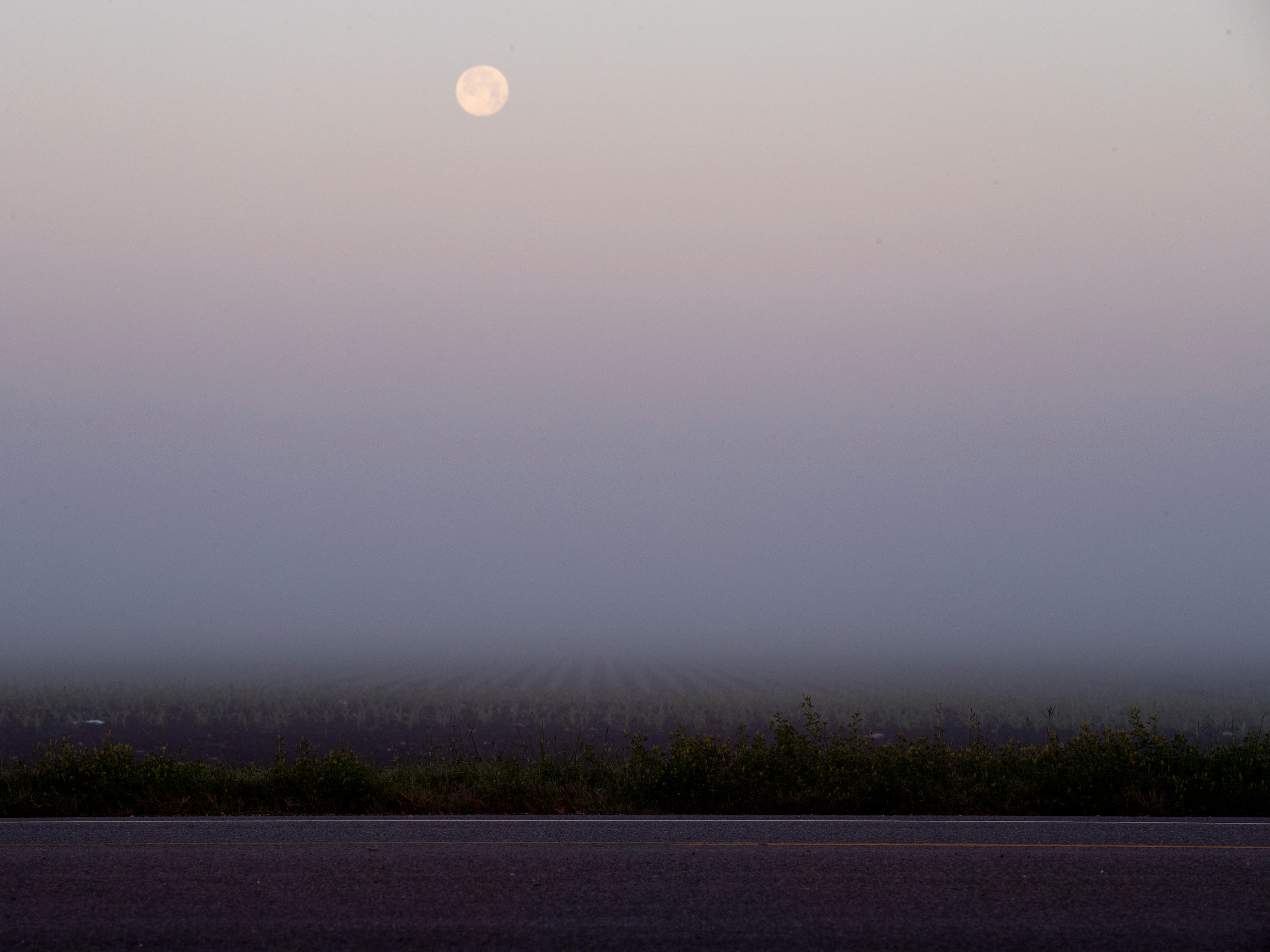 The moon peeks through the fog on a field off Chapman Ranch Road on Thursday, March 21, 2019.