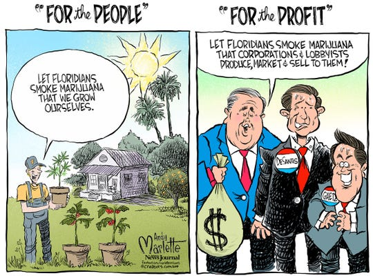 For the people or for the profit?