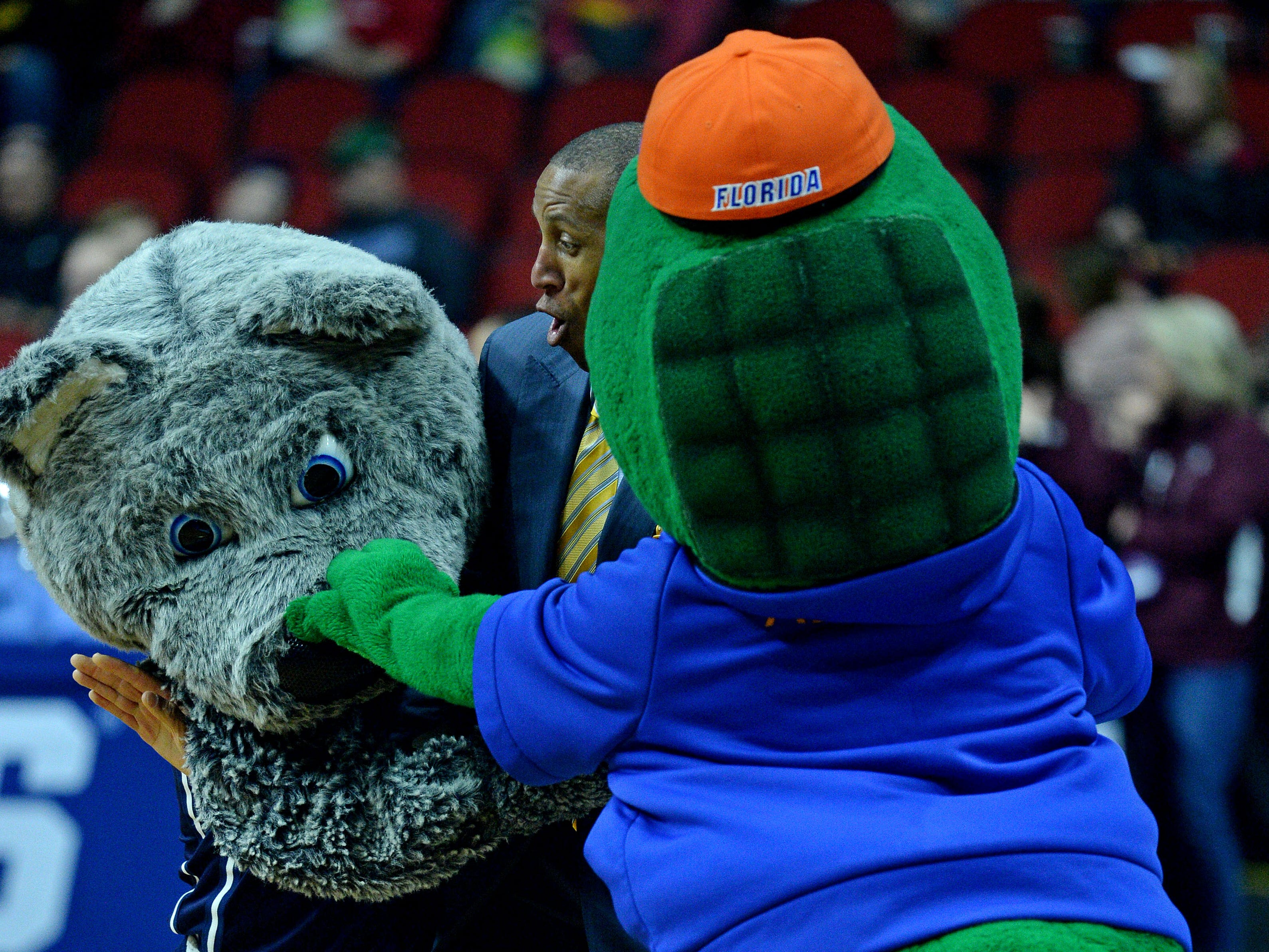TV analyst Reggie Miller pretends to break up a fight between the Nevada Wolf Pack and the Florida Gators mascot March 21, 2019, in the first round of the NCAA Tournament at Wells Fargo Arena in Des Moines.