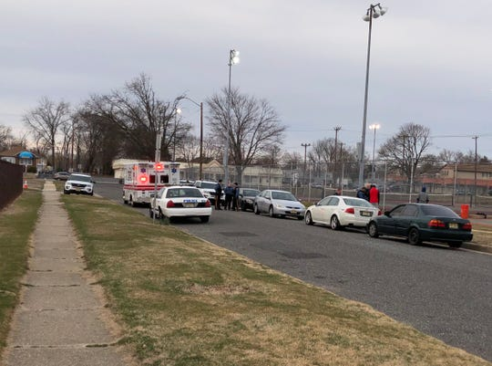 Vineland Police responded to reports of an assault in the area of Normandie Lane, just off Chestnut Avenue, on March 20, 2019.
