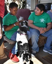 Javion Donnell, left, and Carlos Balcorta talk while petting dogs on their break from volunteering at a Petrolia dog shelter during Absolutely Incredible Kids Day Thursday.