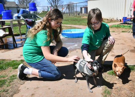 Natalie Dell'Aquila, left, and Ashlyn Huthchison play with dogs at Katy's Dog Place in Petrolia after volunteering there as part of Camp Fire USA's Absolutely Incredible Kids Day. A group of junior high students helped with cleaning kennels, food bowls and bedding.