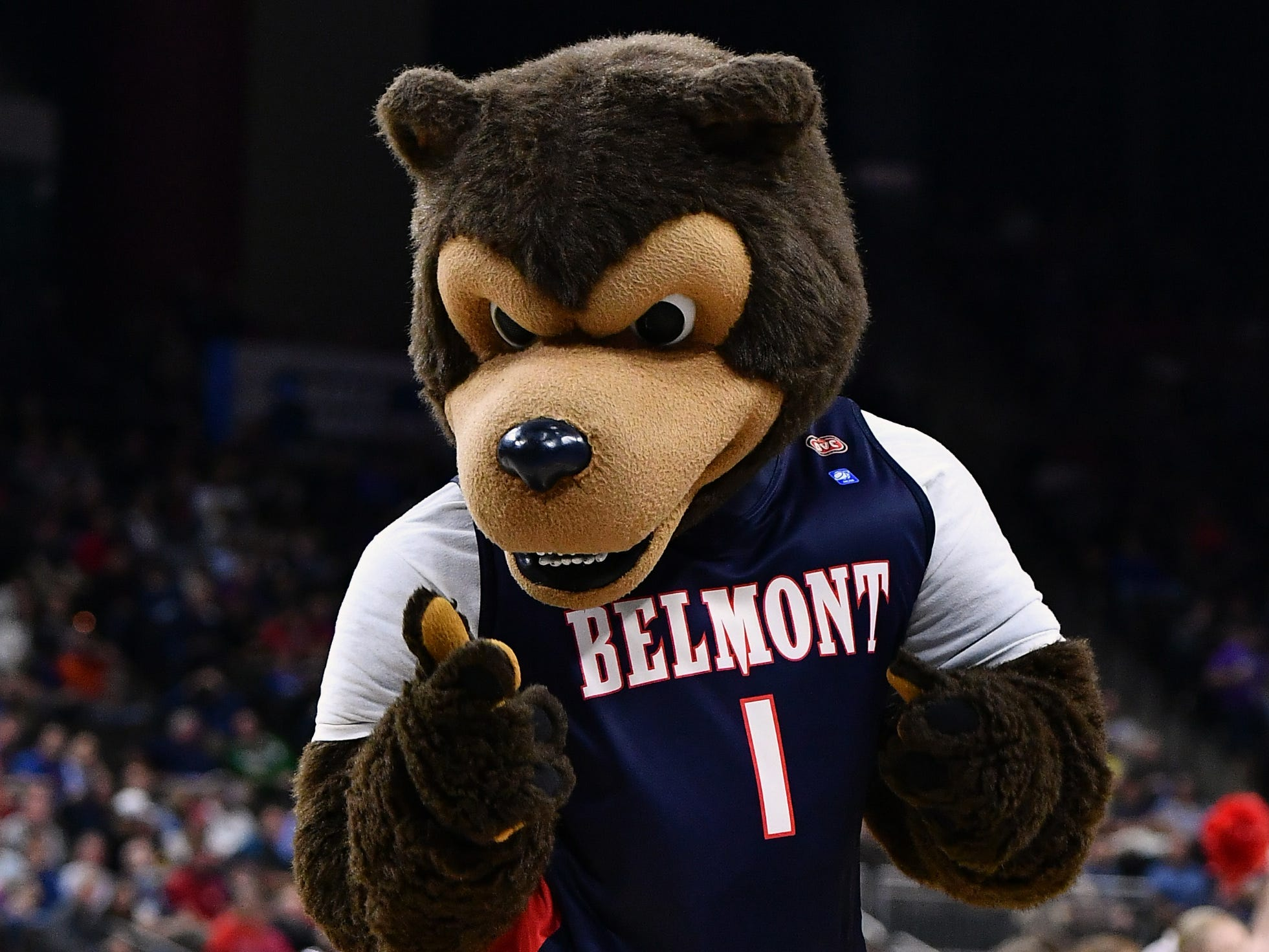 Belmont mascot Bruiser the Bruin looks like something out of a nightmare.