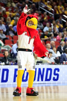 First round: The Louisville Cardinals mascot during the game against the Minnesota Golden Gophers.