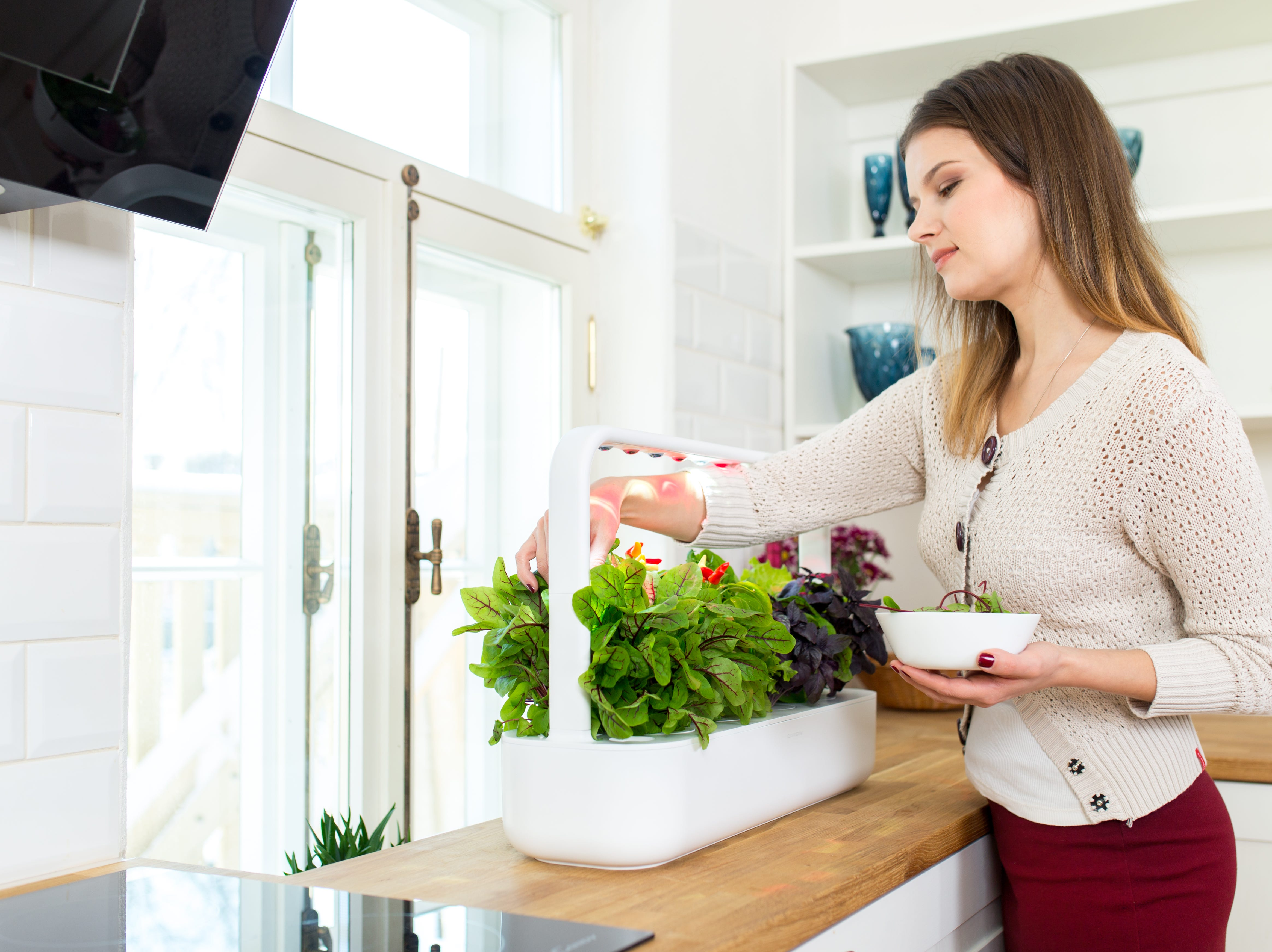 The Click & Grow Smart Garden ($199.95) is a self-watering system that allows even the most amateur gardeners to quickly and effortlessly grow produce.