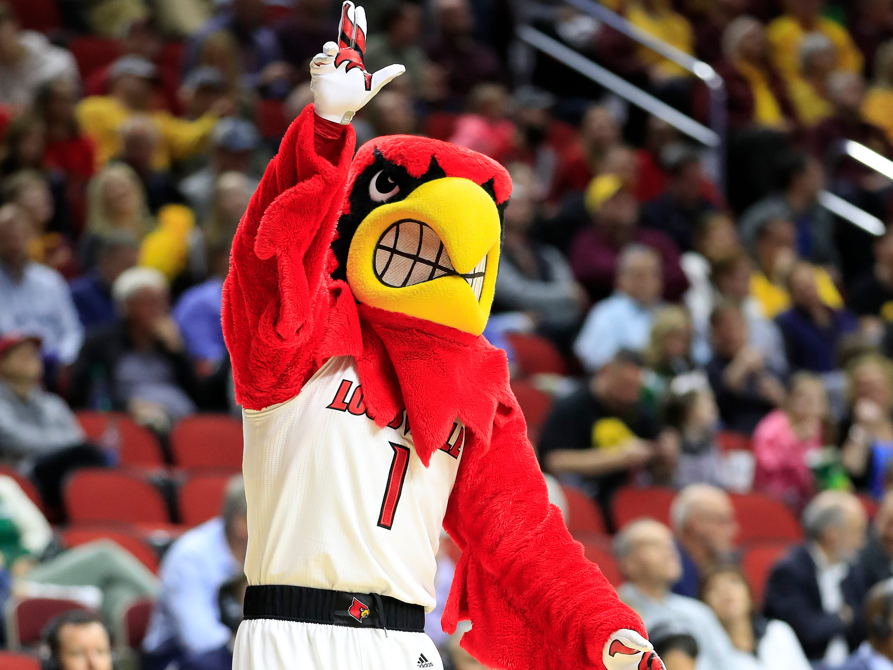 Louisville's Louie the Cardinal is spotted during a first-round game against Minnesota. Who knew a cardinal could look so mad?